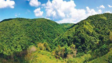 Photo of Sociedad Ecológica del Cibao exige declaren Loma Miranda parque nacional