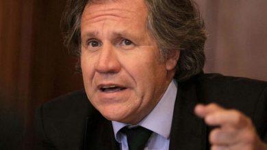 Photo of «Reelección presidencial no es un derecho humano», dice Luis Almagro