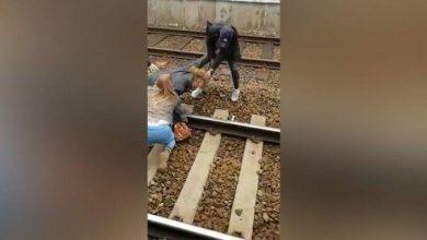 Photo of Video: Insultos racistas contra dominicano provoca trifulca en una estación de tren en Bélgica