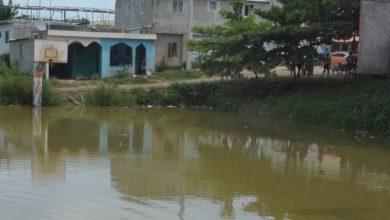 Photo of Hasta ahora República Dominicana mantiene control de casos de malaria