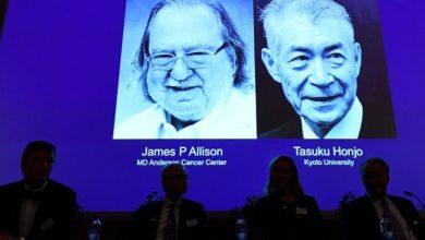 Photo of El Nobel de Medicina premia la inmunoterapia del cáncer