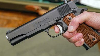 Photo of Piden Interior y Policía aplique programa «mano dura» para evitar asesinatos con armas de fuego