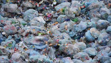 Photo of La UE prohibirá los plásticos de un solo uso a partir de 2021