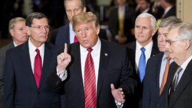 Photo of Donald Trump expulsaría al país y otros dos del DR-Cafta