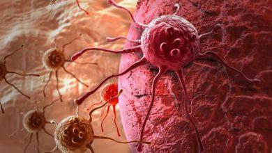 Photo of Fármaco promete combatir células cancerosas regulando el reloj circadiano