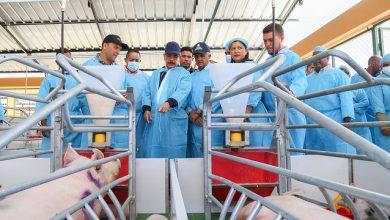 Photo of El presidente Danilo entrega granja de cerdos en La Romana