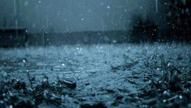 Photo of ¡Venga la lluvia!