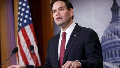 Photo of Senador de EEUU Marco Rubio dice debe ser motivo de preocupación intentos reeleccionista de Danilo