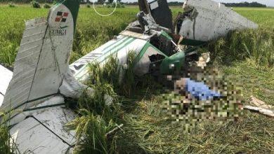 Photo of Muere piloto tras accidentarse avioneta en que realizaba trabajos de fumigación en SFM