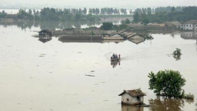 Photo of Cinco muertos y cientos de casas destruidas en Corea del Norte por tifón Lingling