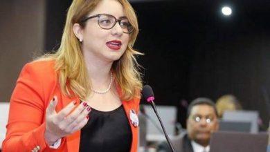 Photo of Gloria Reyes: PLD no ha sabido dividir la función del Estado de la politiquería