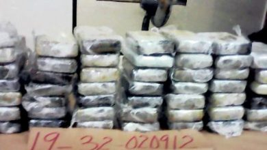 Photo of DNCD incauta 49.90 kilos de cocaína en Caucedo