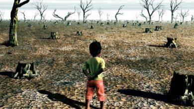 Photo of El cambio climático amenaza la salud infantil en todo el mundo