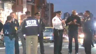 Photo of Tiroteos en feriado de Acción de Gracias dejan 10 heridos en El Bronx