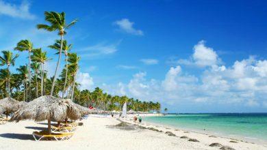 Photo of Las muertes de turistas en República Dominicana, uno de los temas que lideraron la búsqueda en Google
