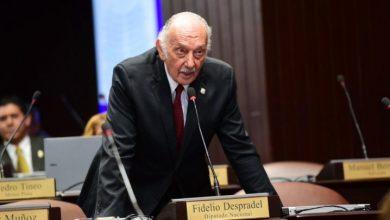 Photo of Fidelio Despradel pide interpelar al ministro de Medio Ambiente por construcción de hotel en Parque Cotubanamá