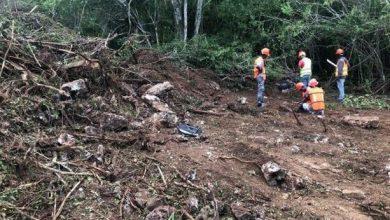 Photo of Danilo Medina ordena suspender construcción en Parque Nacional del Este