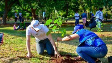 Photo of ADN realiza jornada de arborización en zonas del Distrito Nacional