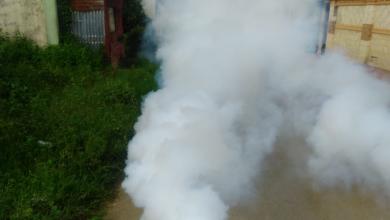 Photo of Gobierno anuncia fumigación masiva de espacios públicos