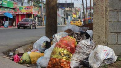 Photo of Basura continúa siendo el dolor de cabeza en SDN
