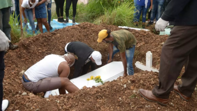 Photo of Clerén o «Tapa Floja» ha causado 24 muertes en el Gran Santo Domingo