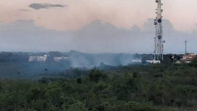 Photo of Humareda por quema de árboles afecta la salud de residentes en sectores autopista San Isidro
