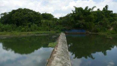 Photo of CAASD admite 45 sectores de Santo Domingo Este no reciben agua con eficiencia