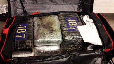 Photo of DNCD y Cesac bajo investigación por cargamento de coca incautado en aeropuerto de Bruselas