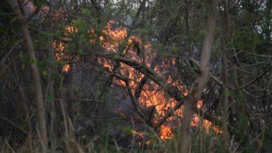 Photo of Fuego en el vertedero de Duquesa está fuera de control