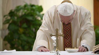 Photo of El papa agradece la labor de los enfermeros y enfermeras, ejemplo de heroísmo