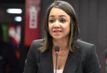 Photo of Faride plantea que el proyecto de Presupuesto se discuta con la sociedad