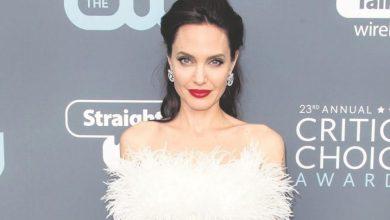 Photo of Angelina Jolie llega a 45 años, con 6 hijos y lejos de Brad Pitt