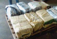 Photo of Decomisan en Barcelona 250 kilos de cocaína procedente de RD