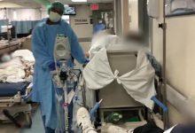 Photo of Reportan 430 nuevos casos de coronavirus y 5 muertes