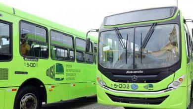 Photo of La OMSA crea dos rutas para facilitar acceso al Merca de Santo Domingo