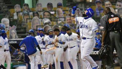 Photo of Los Tigres del Licey batallan por sobrevivir en el béisbol invernal