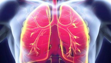 Photo of Día Mundial de la Tuberculosis 2021: Causas, síntomas y tratamientos