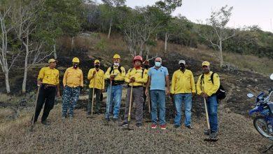 Photo of Bomberos forestales sofocan dos incendios en bosques de Dajabón