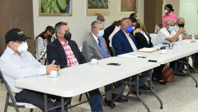 Photo of Consejo Nacional Apícola e importación de miel al país, temas centrales en proyecto que busca regular el sector