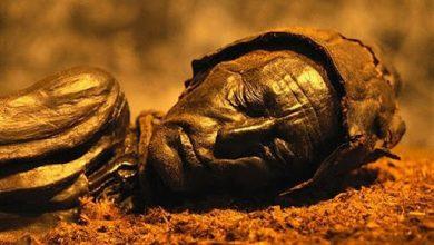 Photo of Revelan qué comió por última vez el 'hombre del pantano' antes de ser sacrificado en un ritual hace 2.400 años