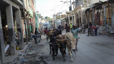 Photo of Haití: Tensión por ayuda tras sismo con más de 2.100 muertos