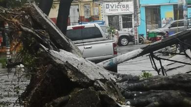 Photo of Daños provocados por Fred en el sector eléctrico de RD