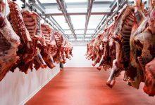 Photo of RD aspira a exportar US$690 mm en carne en 5 años